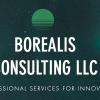 Borealis Consulting LLC