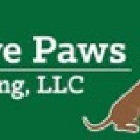 Positive Paws K9 Training